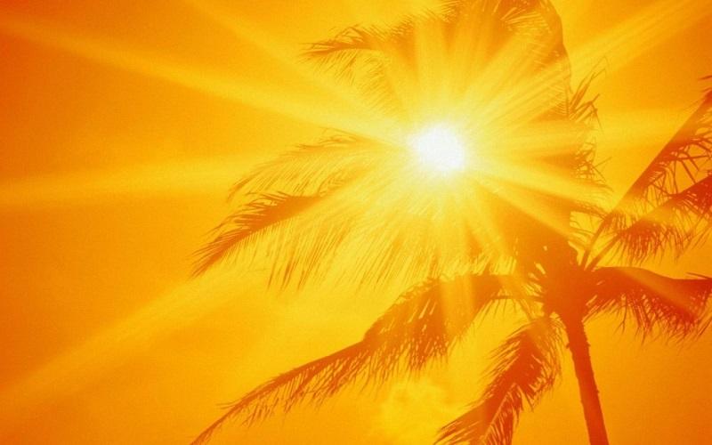 Photo of گرمای چله تابستان، قیمت زعفران را داغ می کند؟