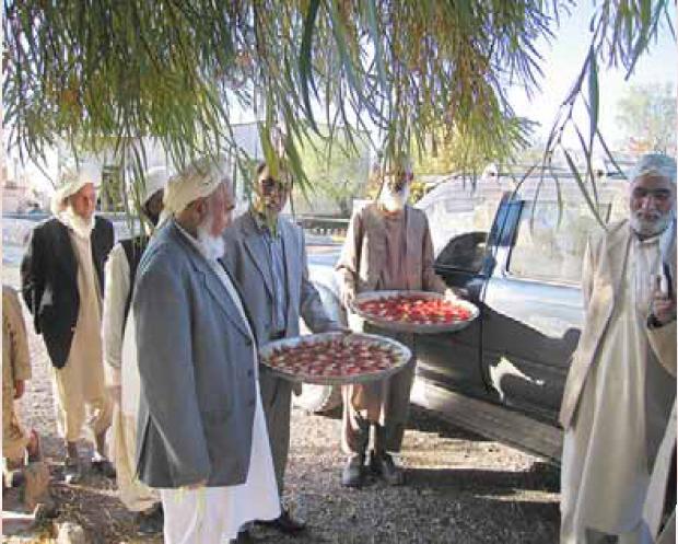 Photo of پیش بینی افزایش تولید زعفران افغانستان به 20 تن