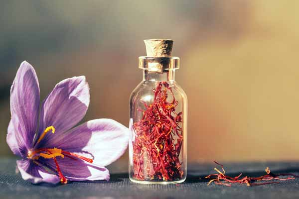 Photo of New Year holidays reduced saffron buyers / market is stable